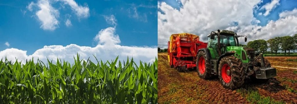 Agricultural business:  Here are Samples of business plans