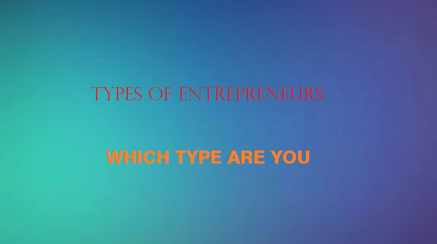 Types of Entrepreneurs: Which One are you?